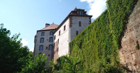 Château de La Petite Pierre, siège du Parc